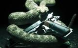Hitman: Absolution – Enthüllung auf der E3 am 5. Juni