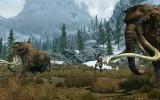 PS3 Probleme bei Skyrim – Keine schnelle Lösung in Sicht und Ursache bekannt