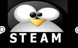 Nur 1.000 Betatester für Linux Version von Steam