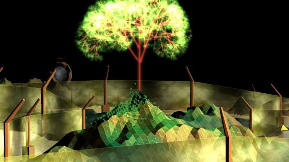 darwinia tree