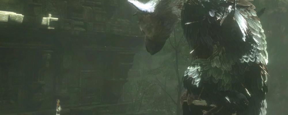 Sony meldet sich wenn The Last Guardian eingestellt wird