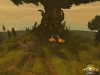 AllodsOnline_Screenshot_MagicTree