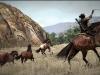 Pferd Lasso